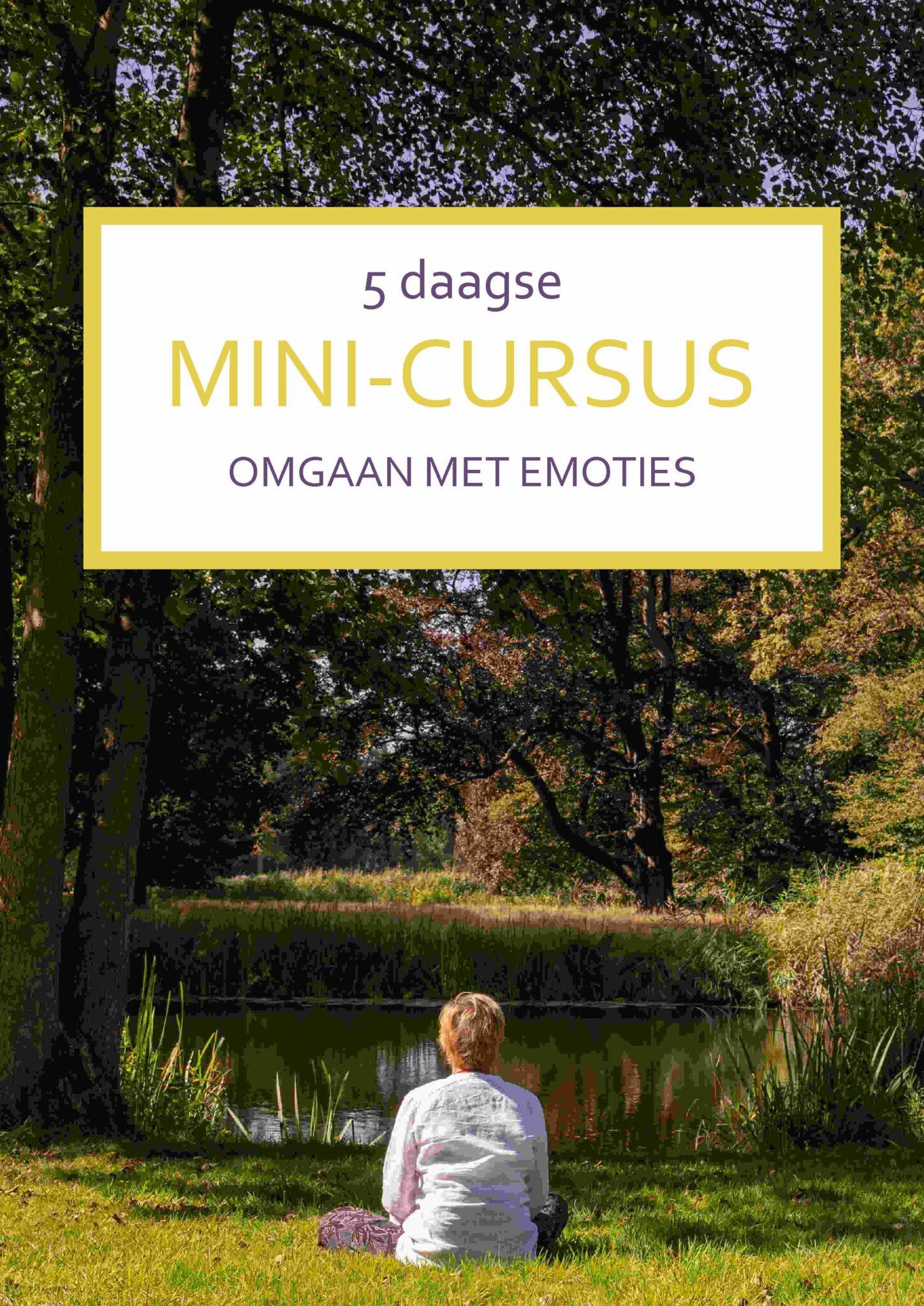 Cover mini-cursus